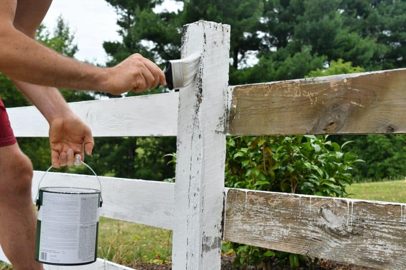 exterior fence painting for reside ces